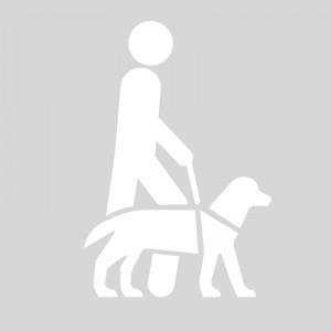 Plantilla pintar señal acceso permitido con perros guia
