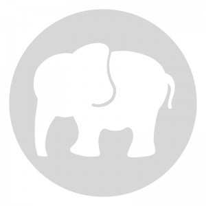 Plantilla pintar señal huellas elefante camino escolar