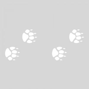 Plantilla pintar señal huellas de lobo camino escolar