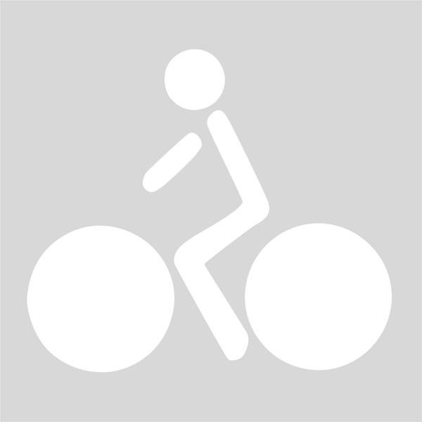 Marca Vial carril bici