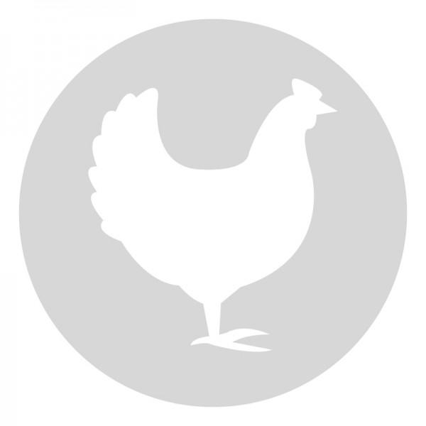 Plantilla pintar señal gallo camino escolar  Ø 80