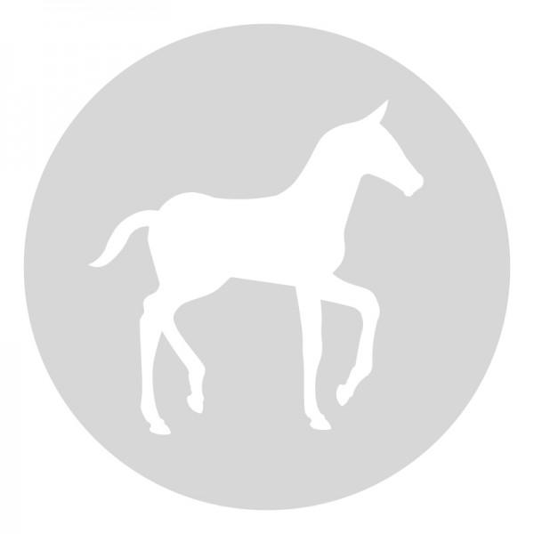 Plantilla pintar señal caballo camino escolar  Ø 80